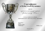 Сертификат кубка_1